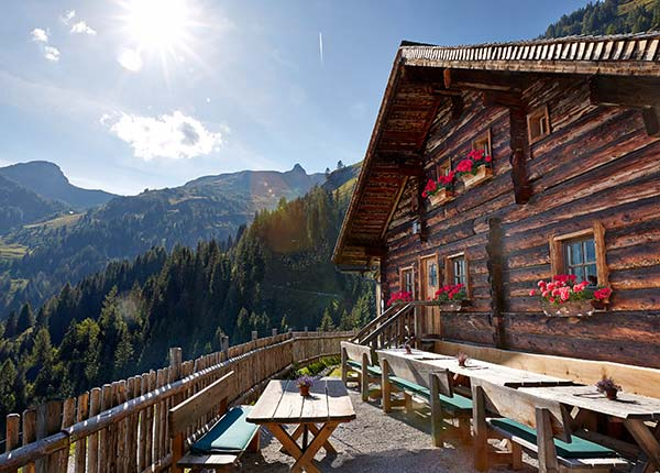 The Mooslehenalm Alpine lodge in Grossarl GROSSARLER HOF