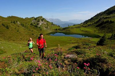 Active holiday with BERG-GESUND GROSSARLER HOF SalzburgerLand