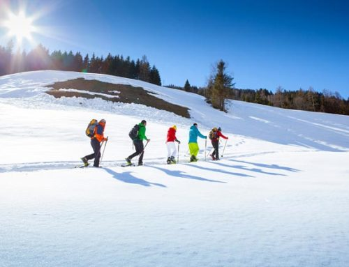 GROSSARL VALLEY SKI TOURING HEAVEN